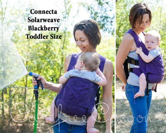 connecta blackberry toddler cc