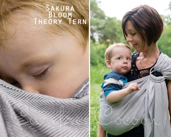 SB theory tern