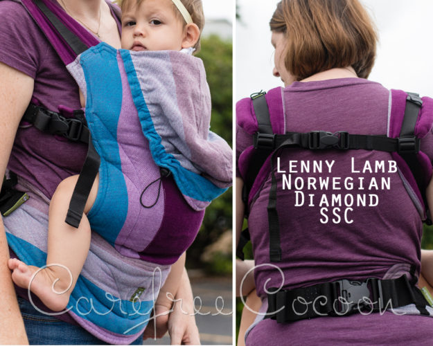 lenny lamb norwegian diamond